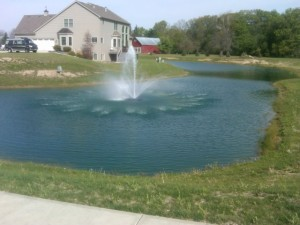 How to Clear Up Cloudy Pond Water